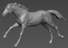 Animal: Horse №2