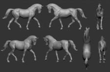 Animal: Horse №4