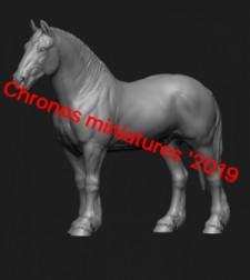 Animal: Horse №12