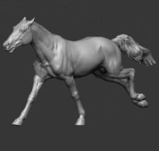 Animal: Horse №18