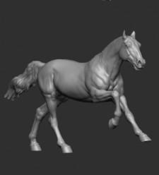 Animal: Horse №19