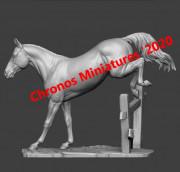 Animal: Horse №15