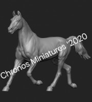 Animal: Horse №16