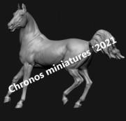 Animal: Horse №20